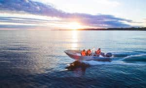 Rik på sjövett i Nynäshamn
