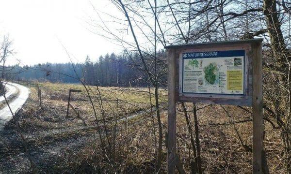 Rosenlundsskogens_naturreservat_2015