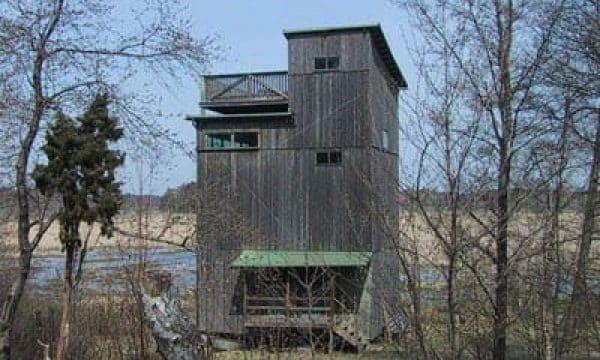 fågeltornet